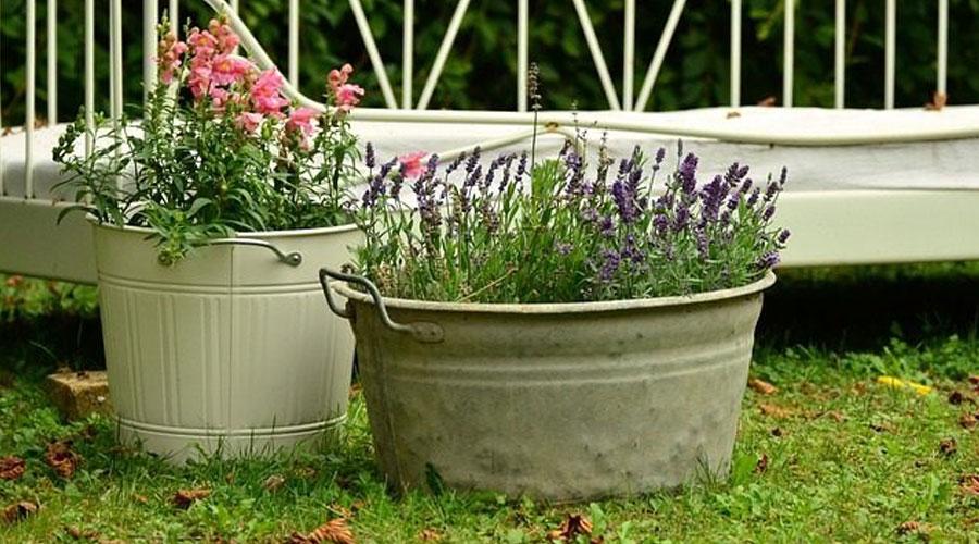 7 bienfaits du jardinage sur les seniors